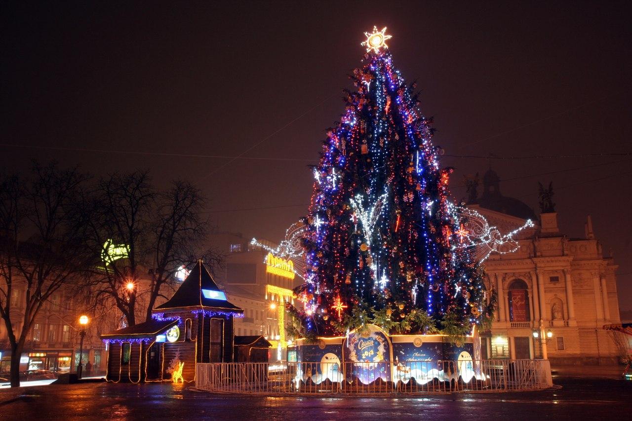 Main Christmas tree in Lviv