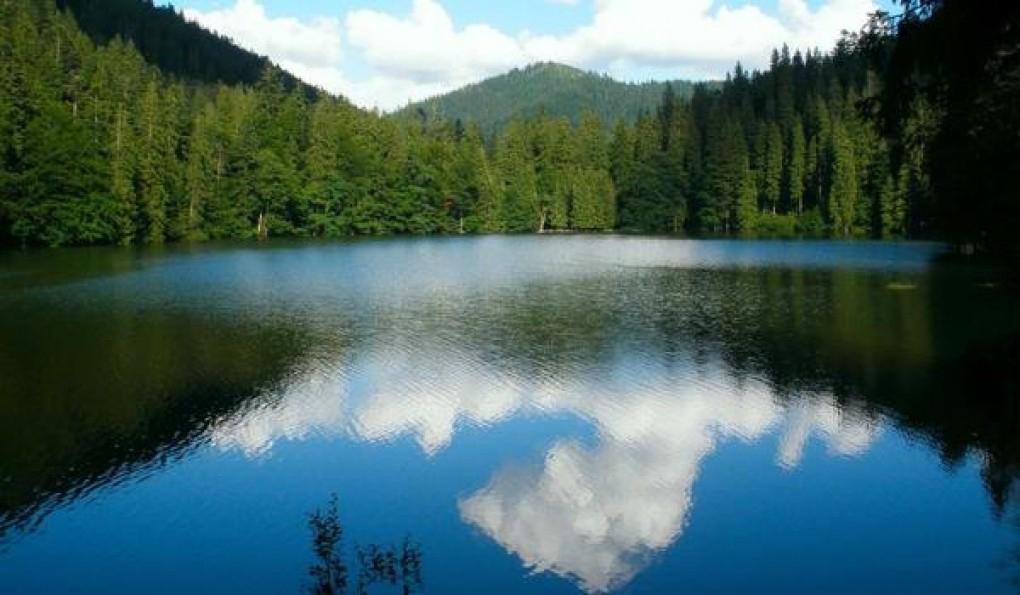 Шелехівське озеро - фото 260955