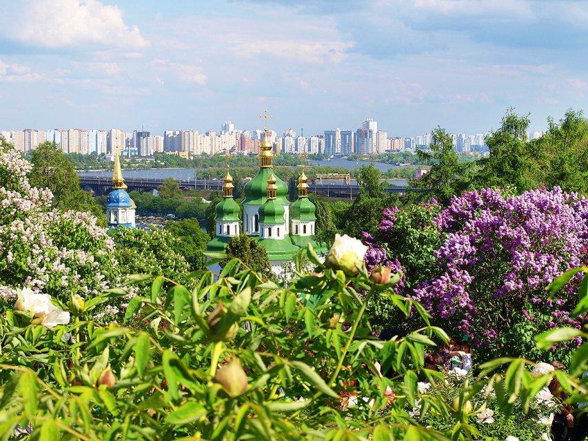 Національний ботанічний сад імені Гришка - фото 281261
