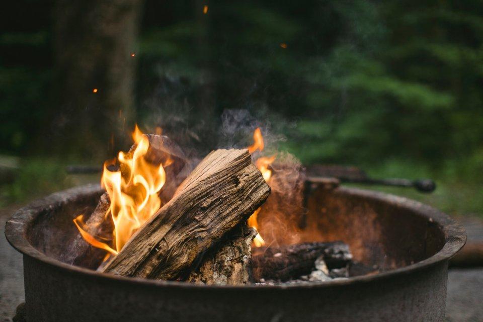 В Україні оголошено пожежну небезпеку - фото 286061