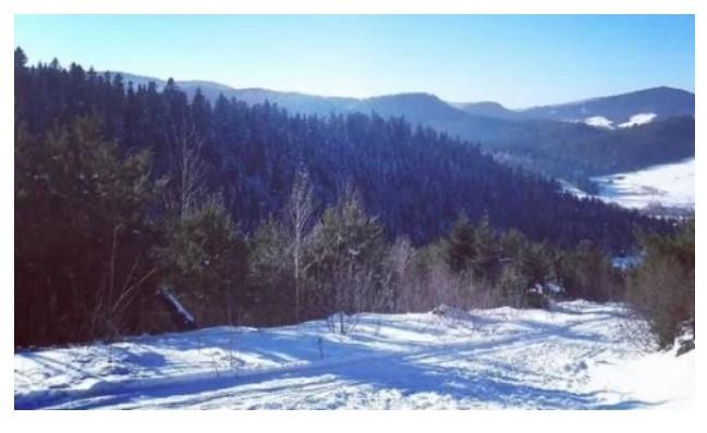 Гірськолижний спуск комплексу «Бойківський двір» (фото з Instagram @stepan3591)