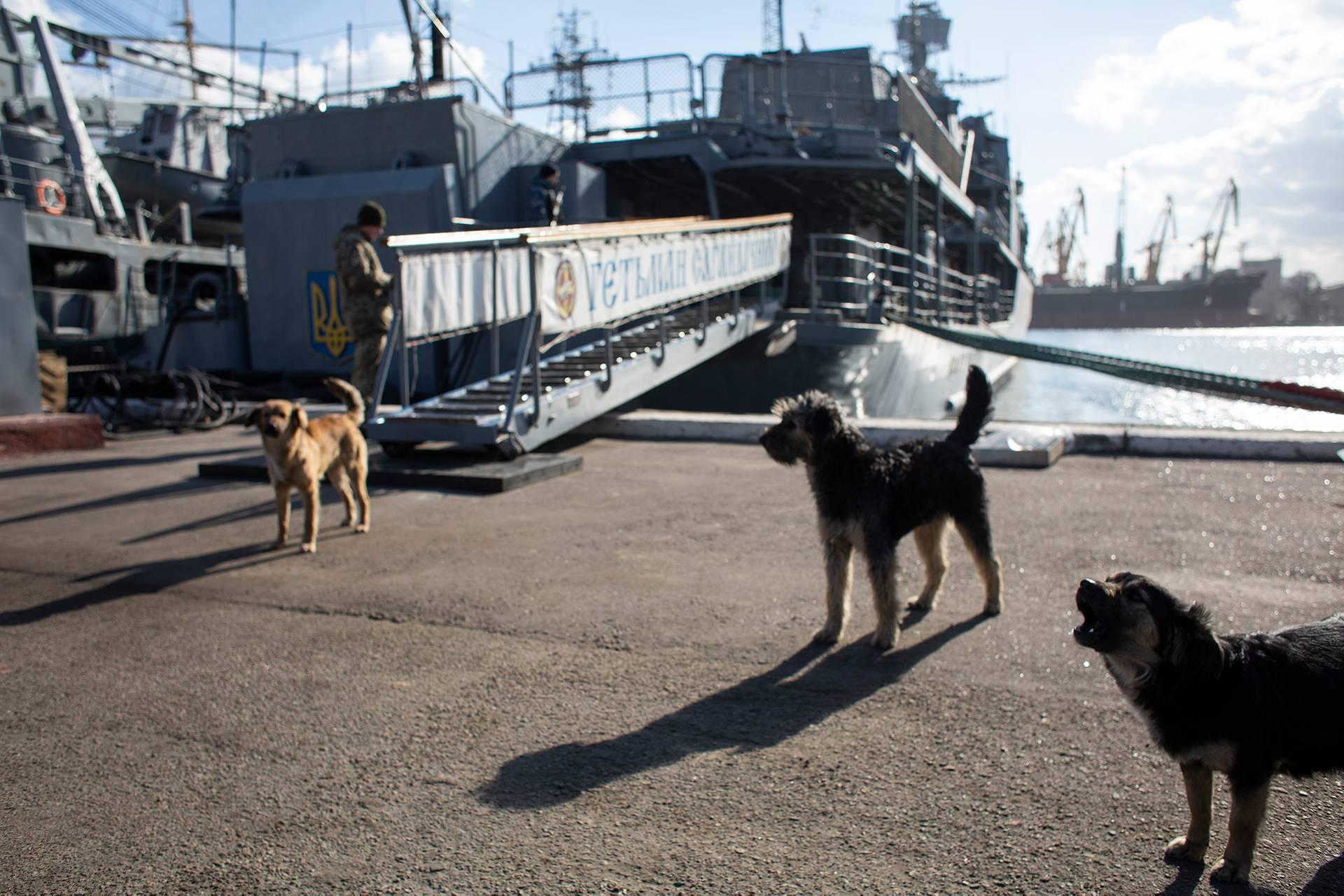 Найбільший за розмірами і найпомітніший корабель на базі ВМС України в Одесі — багатоцільовий фрегат «Гетьман Сагайдачний», 1 березня 2019 року