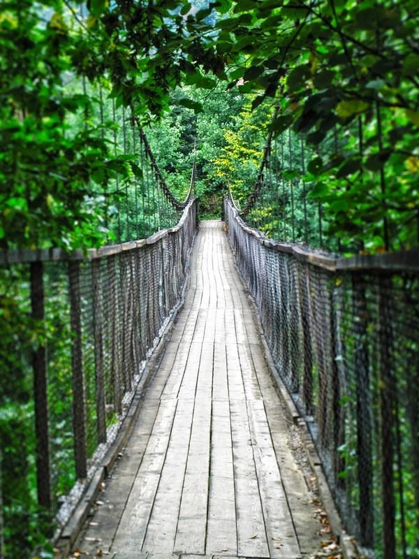 Міст у казку фото: Y K