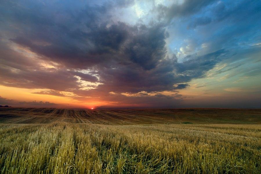 фото: Taras Lesiv