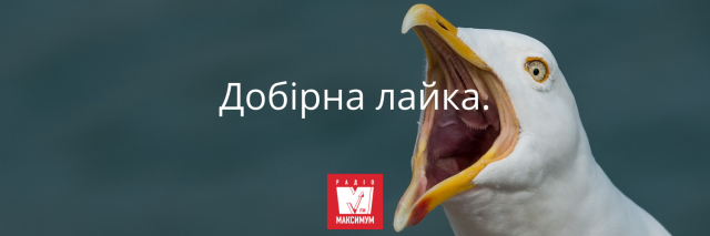 10 українських фраз, які замінять поширені кальки у вашому мовленні - фото 388251