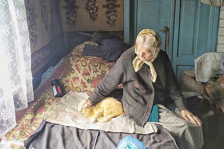 Кіт Рижик — найкращий друг бабусі.
